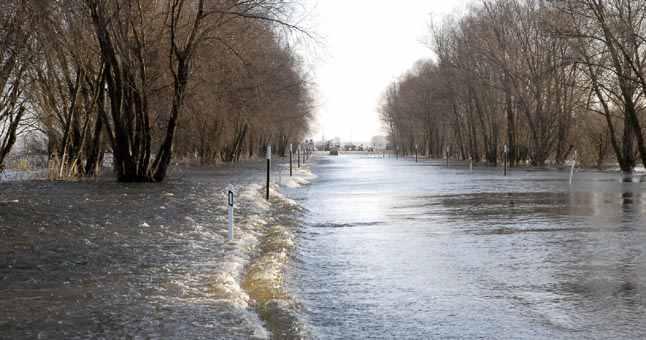 Pavasarinis potvynis
