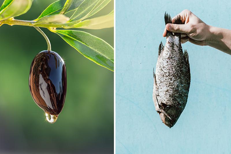 Bioplastiko išradėjai pasitelkia gamtos išteklius – nuo alyvuogių kauliukų iki žuvų kaulų
